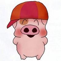 猪8⃣️jie