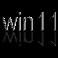 N+1的win11