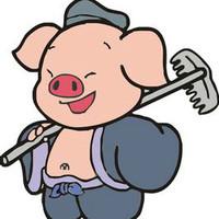 天蓬元帅猪刚鬣