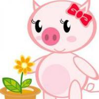 花心小粉猪