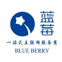 河北蓝莓网络