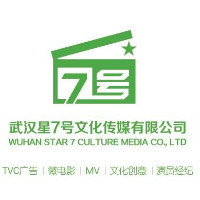 武汉星七号文化传媒有限公司