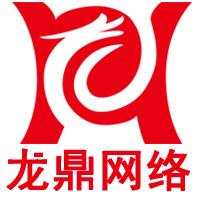 龙鼎网络北京