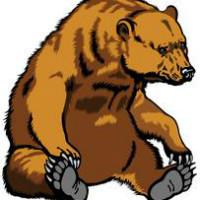 本熊营销方案工作室