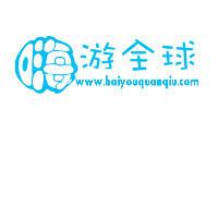 专业网站设计制造定制提供商