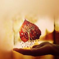clinging heart