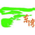 东科_future