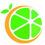 广州黄橙绿橘网络科技有限公司
