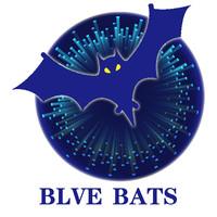 蓝蝙蝠设计