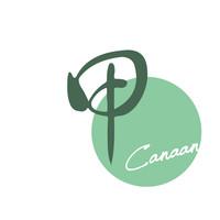 甲Canaan1