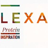LexA阻遏蛋白
