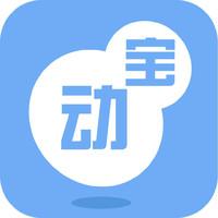 北京动宝科技