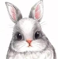 ~兔子家的店~