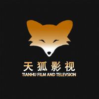 天狐专业影视视频后期拍摄剪辑
