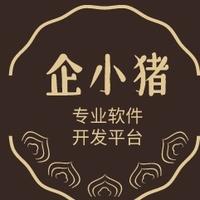燕归巢仁杰网络工作室-专业软件开发