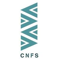 琅阁文化传播CNFS